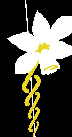 Logo GEOQ
